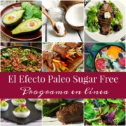 promoefectopaleosugarfree1